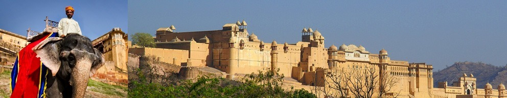 Amber Fort Palace Jaipur tour with Golden Triangle Group Tour India