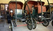 Jaipur City Palace Bhaggi Khana Museum Has A Collection Of Old Carriages