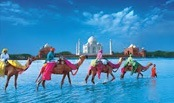 The Golden Triangle Tour of India is a unique way to explore rich Indian traditions and culture.